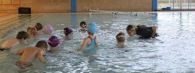 Jardin aquatique dans les piscines intercommunales de for Piscine issoire jardin aquatique